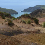 Te Araroa – pieszo przez Nową Zelandię. Część 1: Cape Reinga – Ahipara (ok. 100 km).